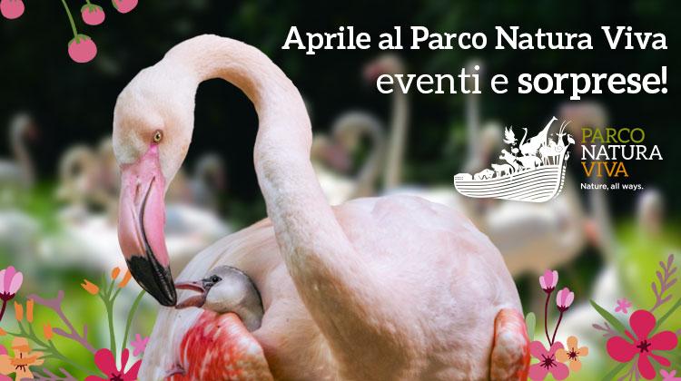 Parco Natura Viva, sorprese ed eventi per Pasqua e aprile 2018